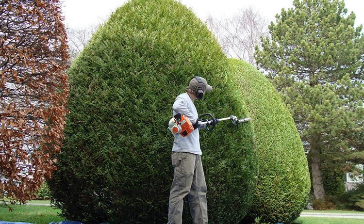 gestione-manutenzione-giardini-landscaper4