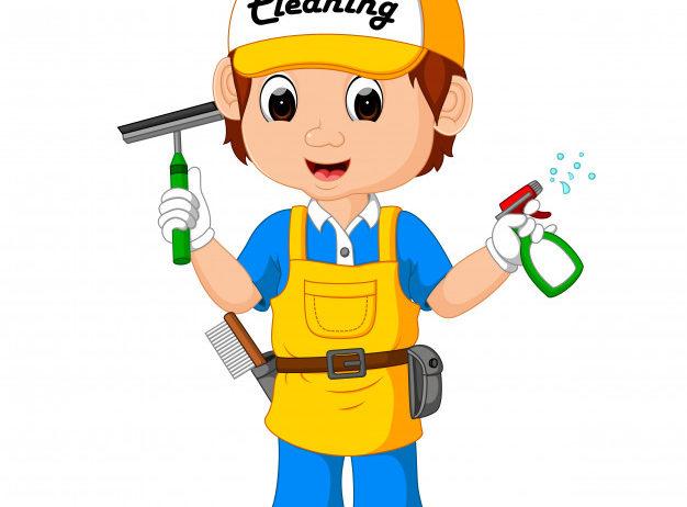 carino-ragazzo-delle-pulizie_33070-2237