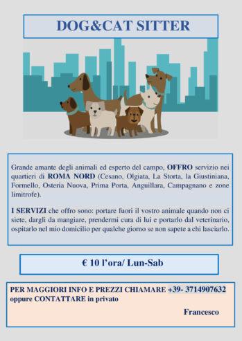 dogcat-sitter-1