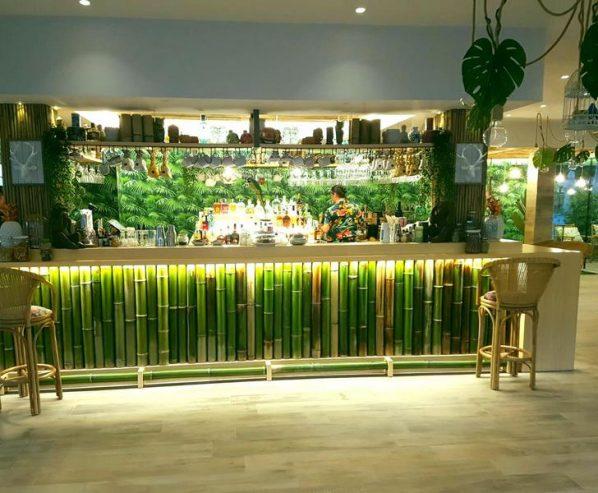 bambu-bambu-bamboo-09